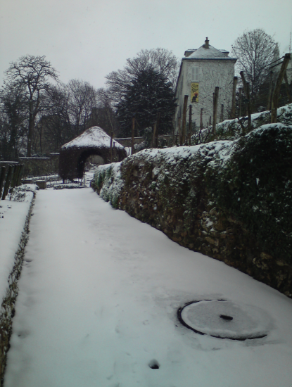 neige vigne 12 mars